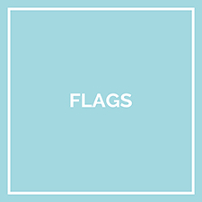 Misc Flags